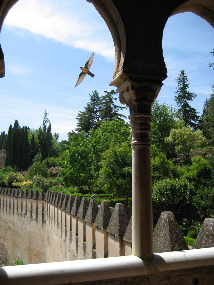 Getting lost in the gardens of La Alhambra, Granada, Spain.  http://www.costatropicalevents.com/en/cultural/city.html