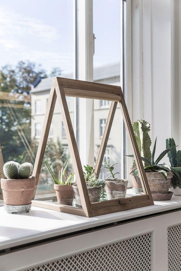 Drivhus i vinduskarmen