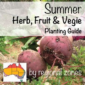 What vegetables, herb & fruit to grow in Summer by regional zone in Australia. By About the Garden magazine garden centres