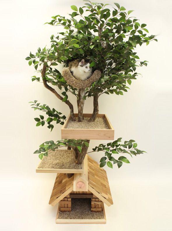Pet Tree Houses : Maisons Arbres en Bois pour Chats