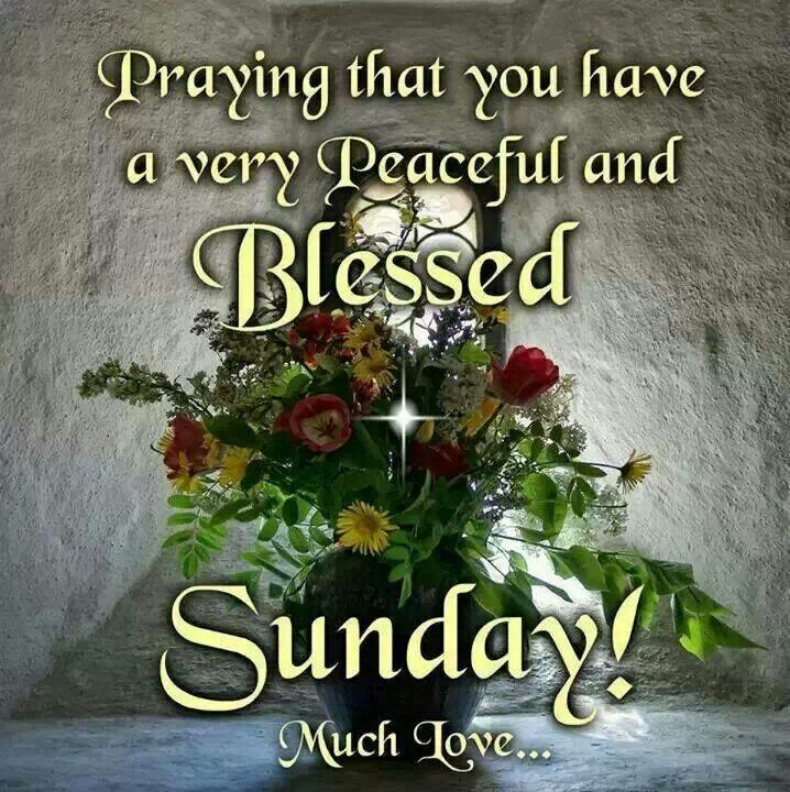 Have a blessed Sunday Sunday Quotes;;; Pinterest