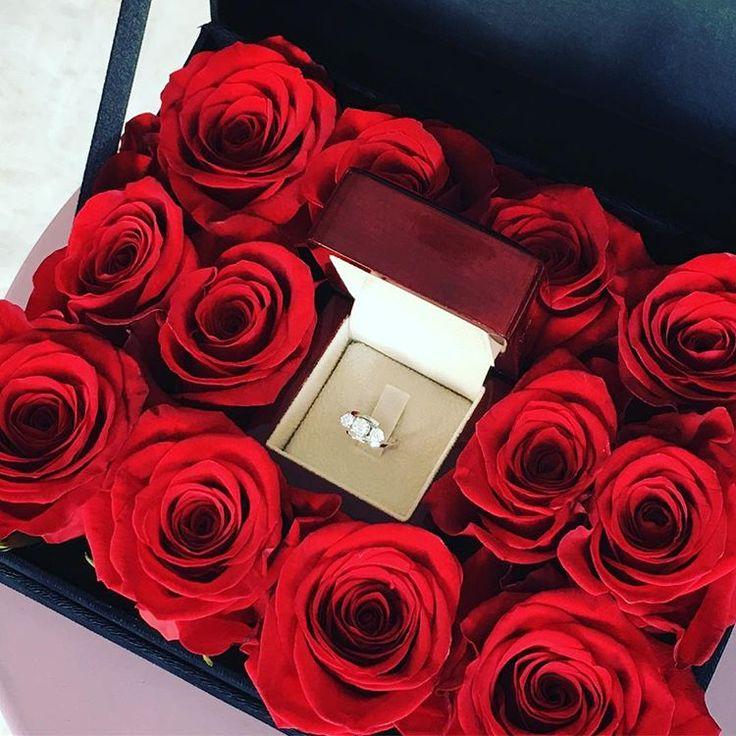 сейчас цветы розы айфон подарки фото желательно сделать