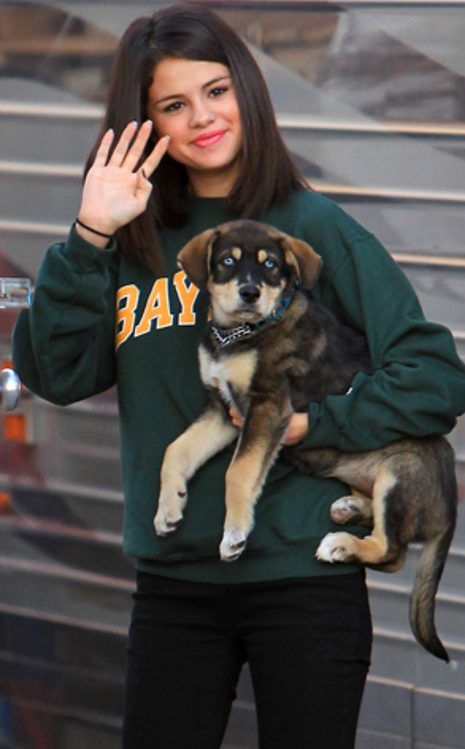 Selena Gomez and Baylor  For supplies fit for any pet celeb visit wooftown.com