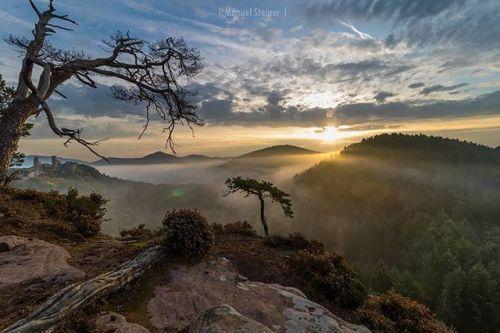 #repost @steiner_photography  Wir haben uns um 5 Uhr auf den Weg nach Dahn (Pfalz) gemacht um ca. eine Stunde vor Sonnenaufgang am Fels zu sein. Die Stimmung als wir ankamen war etwas Mystisch  da wir durch den sehr neblig und dunkeln Wald laufen mussten. Der Nebel war sehr dicht und wir über der Nebelgrenze. Leider verflog der Nebel nach und nach. Die Sonne zeigte sich sehr spät da während des Sonnenaufgangs eine dicke Wolke im Horizont stand. Obwohl sich die Sonne nur wenige Sekunden…