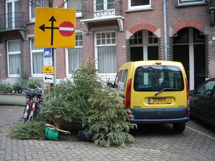 January Christmas Tree 8-1-2008 #Environmental Art Project www.denkbeelden.com Amsterdam 2008 #art #christmas #tree #kerstboom. Snapshot: Yvette van der Does