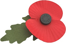 Remembrance Poppies Made by War Veterans.  American Legion Auxiliary Pays for Poppies.    I try to buy one of these every Veteran's Day