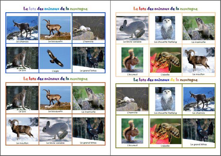 Vocabulaire animaux de la montagne