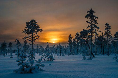 Sunrise Lapland, Finland -raunokalda