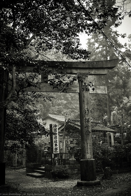 Torii -- the traditional Japanese gate. It might be very cool to build a more modern version of this with my dream house.