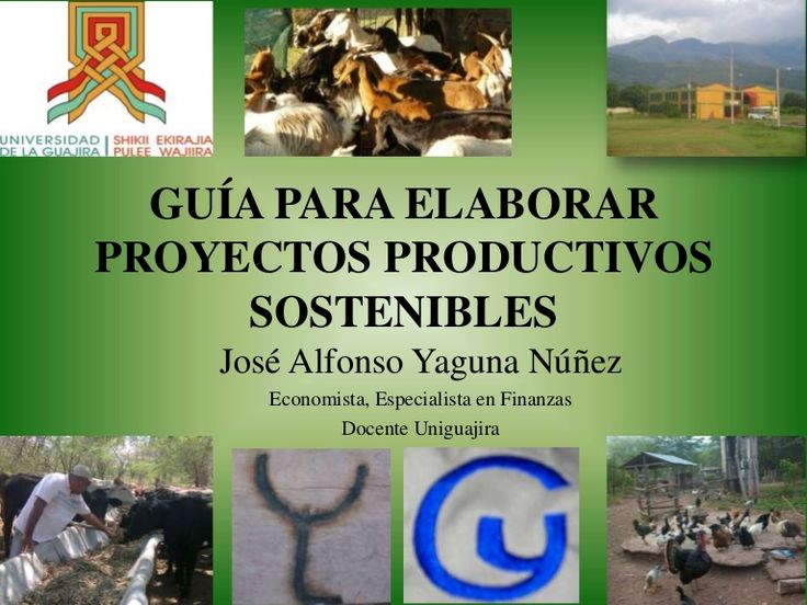 GUÍA PARA ELABORAR PROYECTOS PRODUCTIVOS SOSTENIBLES José Alfonso Yaguna Núñez…