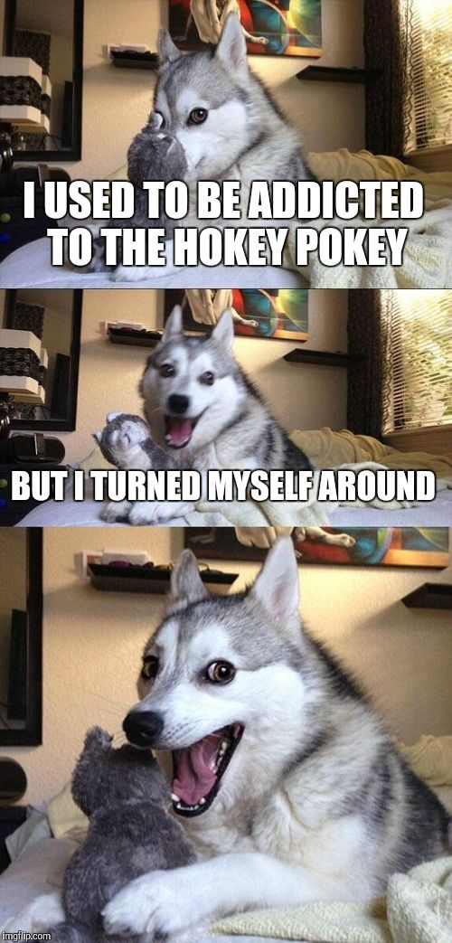 Bad Pun Dog | I USED TO BE ADDICTED TO THE HOKEY POKEY BUT I TURNED MYSELF AROUND | image tagged in memes,bad pun dog | made w/ Imgflip meme maker