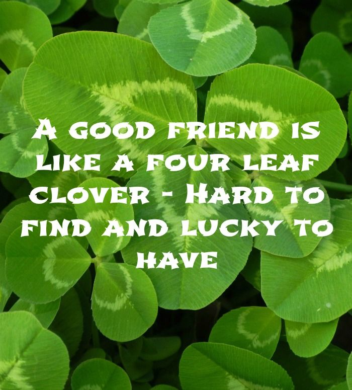 A good friend is like a four leaf clover - hard to find and lucky to have.  See more motivational quotes on Always The Holidays