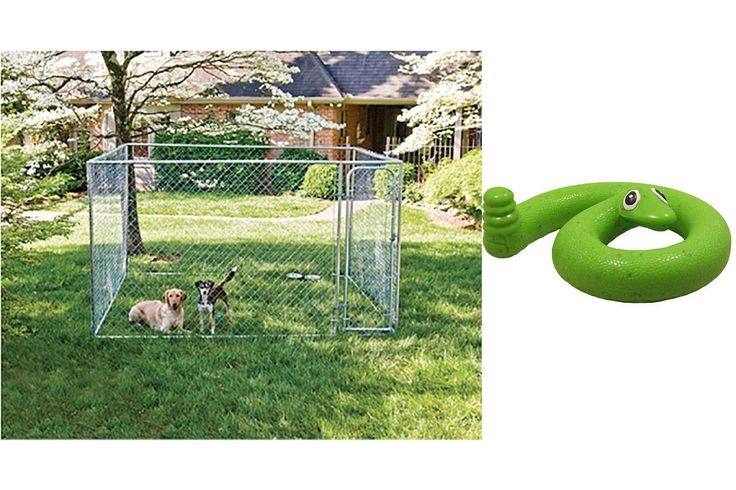 Dog Kennel 10 x 10 x 6 with Green Springy Snake Toy Create a full- size chain-link kennel from the contents of a single box. The do-it-yourself box Read  more http://dogpoundspot.com/dog-luxury-store-1049/  Visit http://dogpoundspot.com for more dog review products