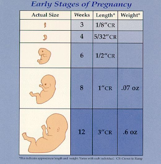 early signs of pregnancy 1st week