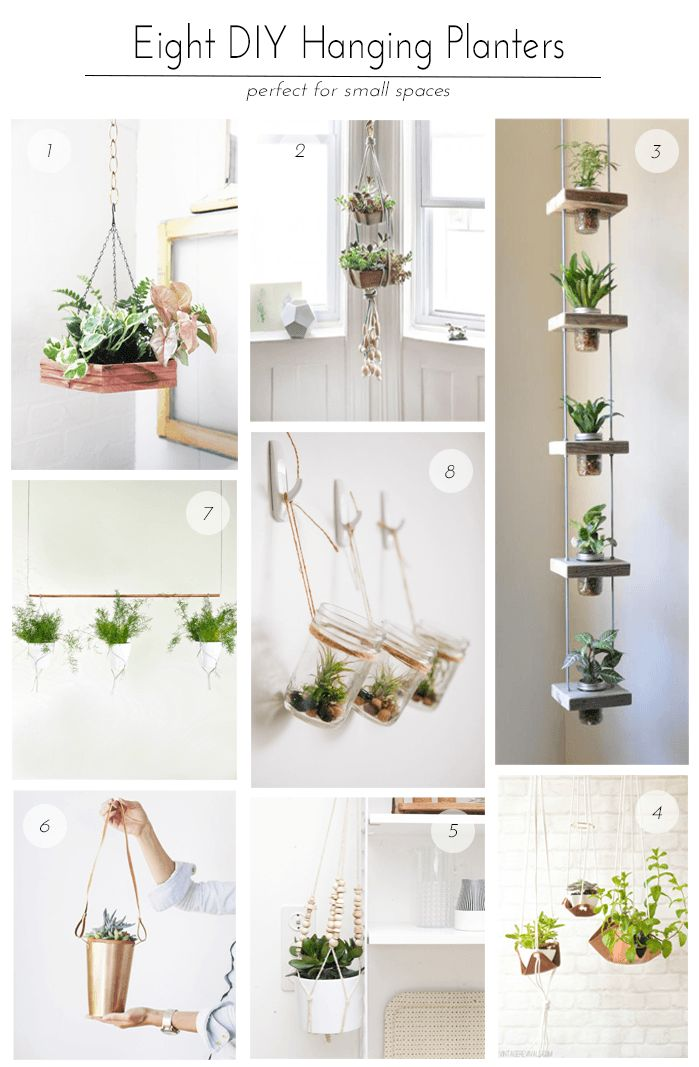 I'm a huge fan of plants, and because we live in an urban area, I'm always l…