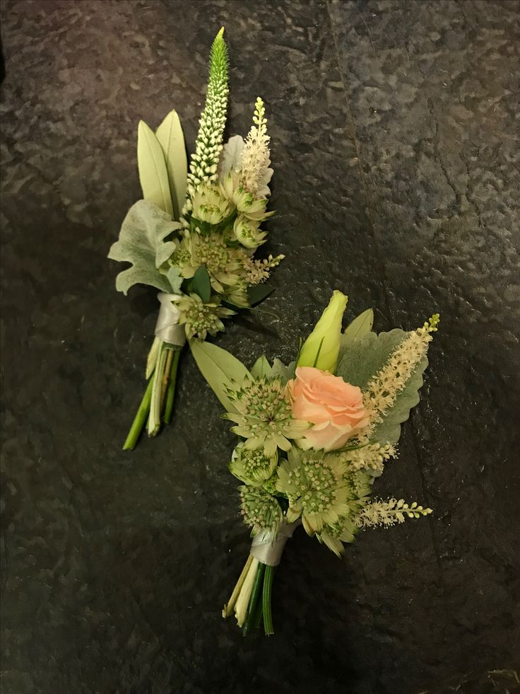 Boutonnieres: White Astilby, White Astrantia, Silver Leaf, Olive Leaf, Sweet Avalanche Spray tied with satin ribbon