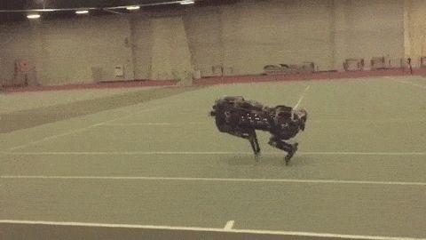 Pesquisadores do MIT construíram guepardos robôs que podem ver e saltar sobre obstáculos de forma autônoma
