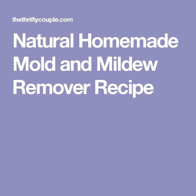 Best 25 Mildew Remover Ideas On Pinterest Diy Mould