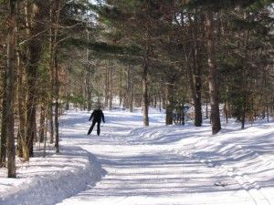 Cross Country Skiing at Hardwood Hills, Barrie
