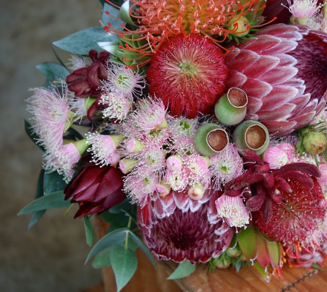 Banksia, Flowering Gum, Gum Nut, Protea, Pincushion, Native Bouquet