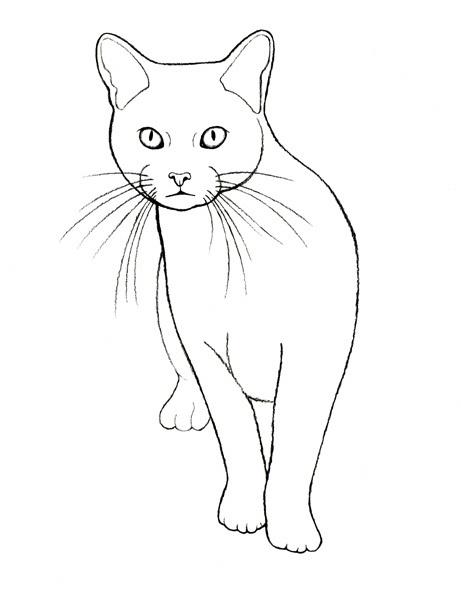 Cat Number 1, via Flickr.