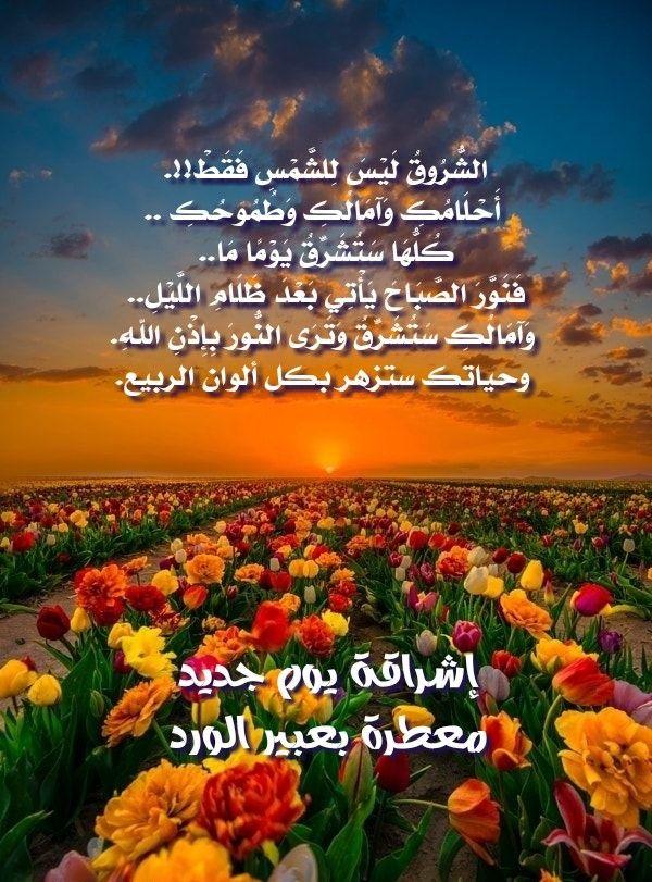 إشراقة يوم جديد معطرة بعبير الورد Morning Images Good Morning Wishes Morning Quotes