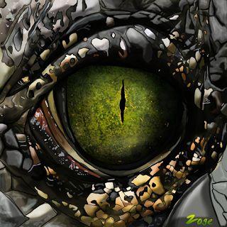 Zoge: crocodile eye