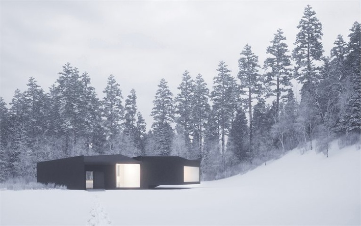 Twins: Houses in Five Parts - New York, United States - 2011 - William O'Brien Jr.  #architecture #snow #mountains #landscape #forest