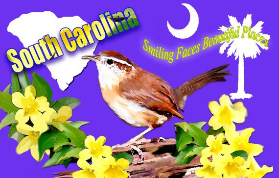 South Carolina Wren With Clemson Tiger and South by SonnyBuds