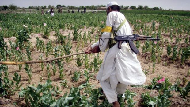 Despite billions spent to eradicate opium crops inAfghanistan, the crop is more popular than ever there, leading many to wonder whether some U.S. forces may actually be encouraging its growth and t... http://winstonclose.me/2015/10/04/is-the-cia-running-opium-trade-out-of-afghanistan-written-by-hang-the-bankers/