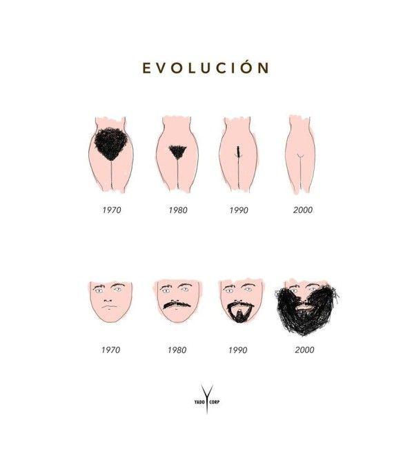 Sexuelle Evolution – Eine Bilanz der letzten 40 Jahre