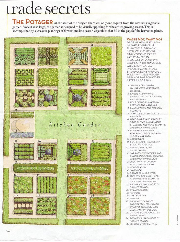 *LARGE GARDEN PROJECT* a year round seasonal plan for experienced gardeners. protractedgarden