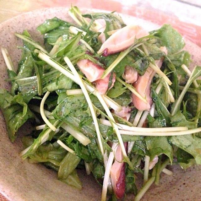 またまたタコサラダヾ(❀╹◡╹)ノ゙❀ タコ飯作った余りで(ω゚ェ^ω) しかも、昼に食べた、丸美やのビビン麺レトルト余りとゴマ油和えただけ〜(ノω`*) ズボラんぬw - 5件のもぐもぐ - タコの頭と水菜、レタスのサラダ by aiedy