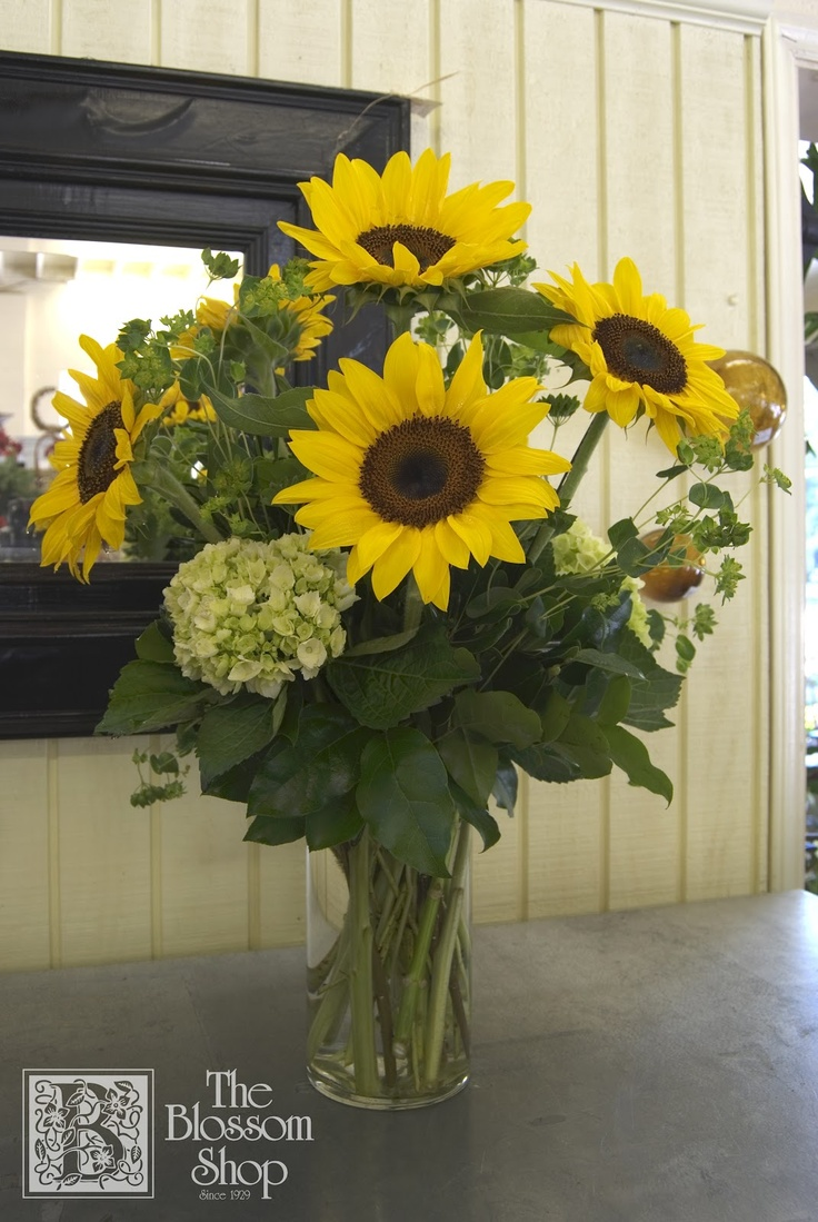Tall vase arrangement of sunflowers green hydrangea and