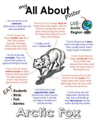 My All About Arctic Fox Book - (Arctic / Polar Animals) from Courtney McKerley on TeachersNotebook.com (9 pages)  - This book will be fun to add to your lesson on Arctic foxes. Other Polar animal books available: Arctic hare, snowy owl, Beluga whale, puffin, Emperor penguin Arctic wolf, walrus, polar bear & caribou