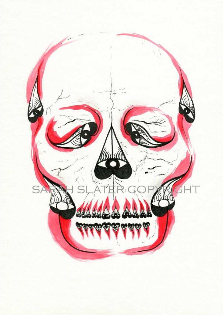 Desert Pea Skull - Sarah Slater Illustration - drawing using ink and watercolour