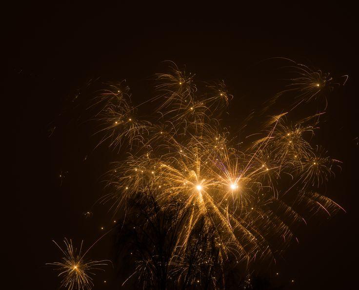 Tak til alle Jer medjægere for året som snart rinder ud.  Godt nytår og et lykkebringende knæk og bræk på Dianas stier i 2016!