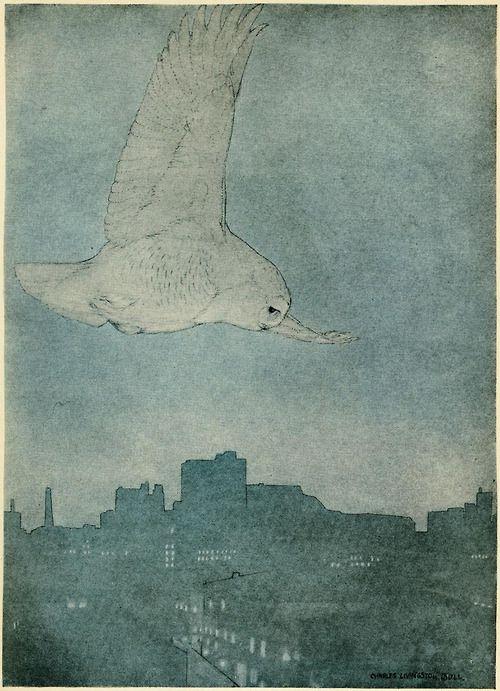 owl in flight by Charles Livingston Bull (1913)