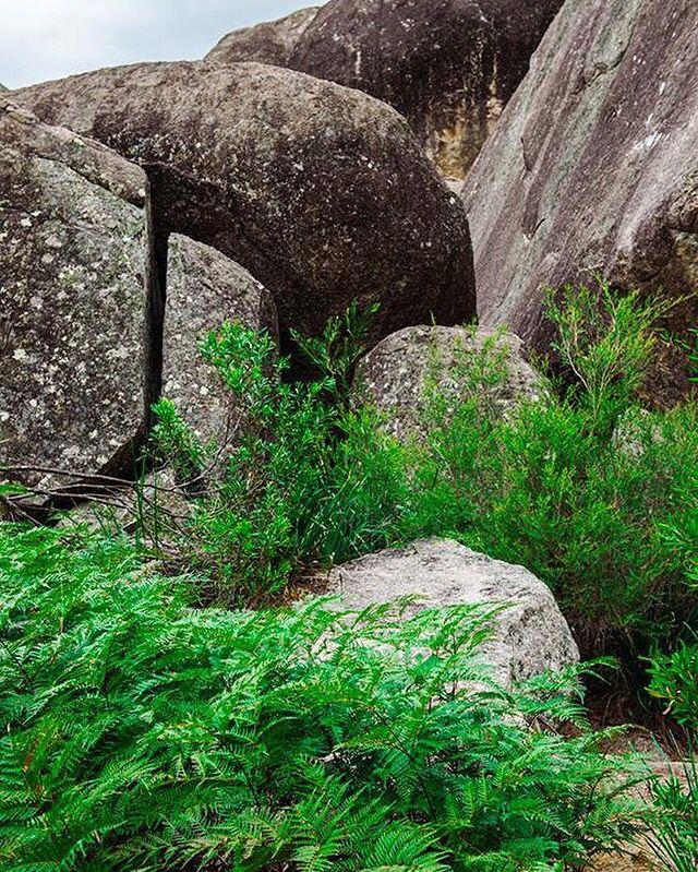 Girraween National Park in Stanthorpe, Queensland, Australia ~