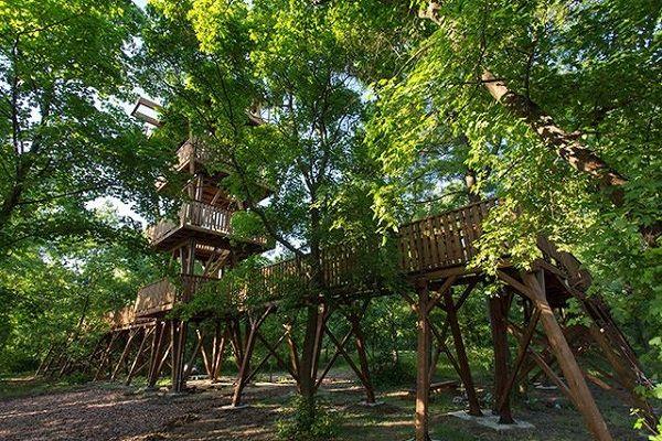 Lombkorona tanösvények: 5+1 varázslatos hely az országban, ahol a lombkoronák között sétálhatsz - Imádni fogj� - Szülők Lapja