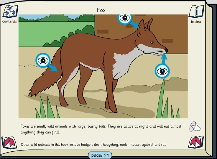 Mammals and Birds: This book contains information about UK mammals and birds. Pupils can either listen to or read the text. The links in the text will navigate to other pages containing related items. Click on the 'eye' to see a pop-up of a feature with its definition.