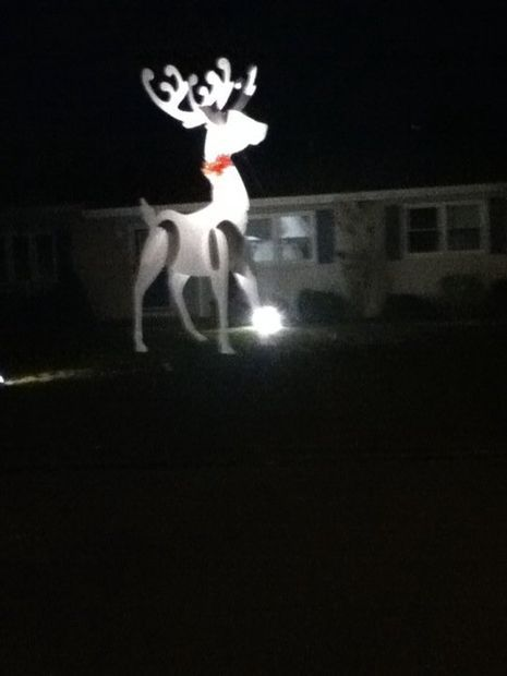 Picture of Giant Reindeer Christmas Decoration