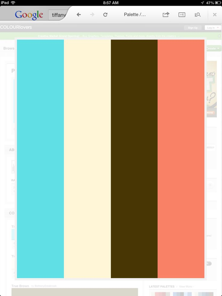 My wedding palette: Tiffany blue, ivory, brown, and peach/coral