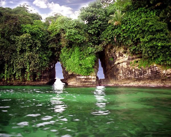 Panama: Bocas del Toro - Bird Island. YO QUIEROOOOOOOOOOOOOOOOOOOOOOOOOOOOOOOOOOOOOO :3