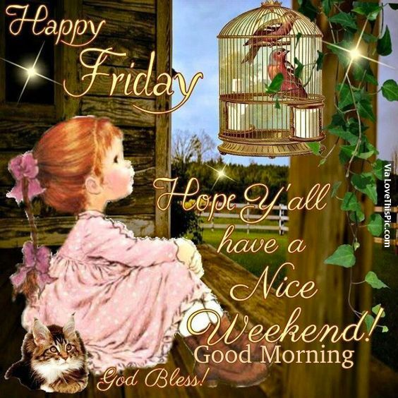 Happy Friday, Hope Yall Have A Nice Weekend friday good morning friday quotes…