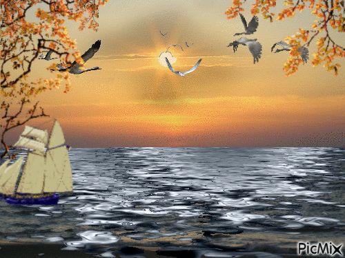 sun sea birds ship