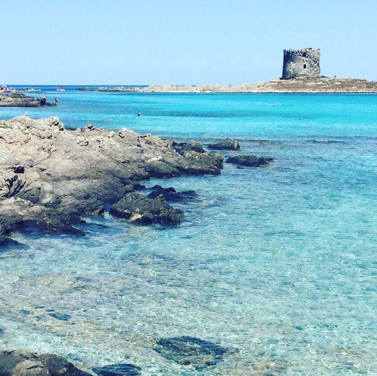Tarja's Snowland: Sardinia, Italia (rakastan..!) sardegna, beach, italy, mediterranean, stintino