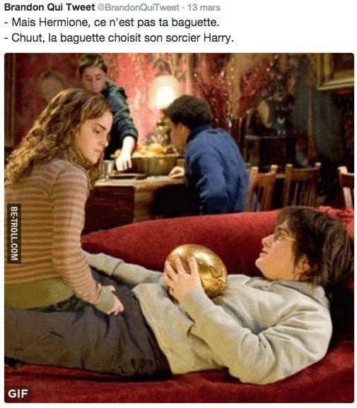 C'est la baguette qui choisit son sorcier Harry...