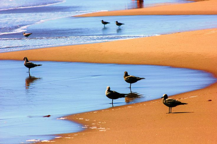 fb.com/calderaatacama