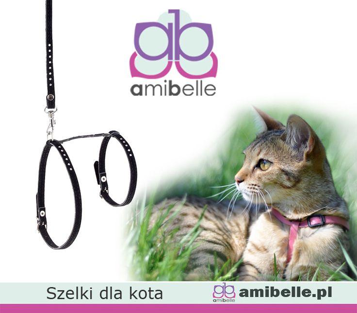 Na spacer, na wycieczkę. W sam raz aby Twój kot mógł spędzać z Tobą więcej czasu. Szelki dla kota znajdziesz u nas w trzech kolorach. Zobacz na www.amibelle.pl